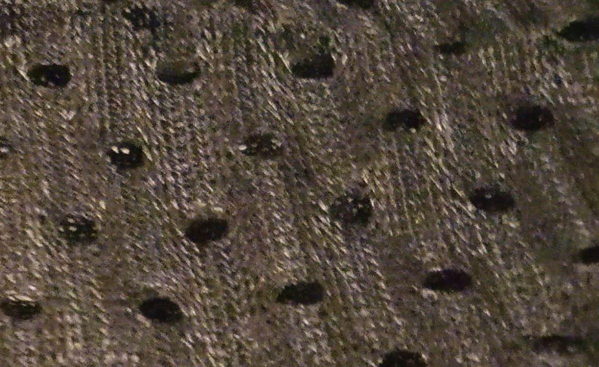 Vezírek (vak ) 75x90 cm