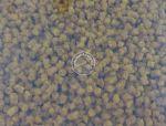 Benzar pelety feeder micro 3 mm - 800 g