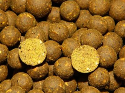 Maxcarp MAX WINTER-Oliheň,Šveska Boilies 800g 16+21mm