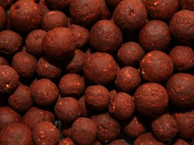 Maxcarp Fresh Boilies 800g 16+21mm